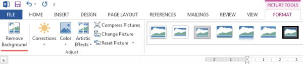 Word Remove Picture