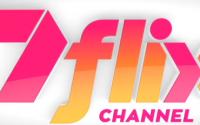 7Flix Logo
